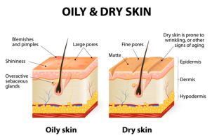 Oil for Oily Skin